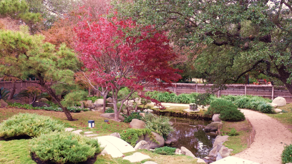 How to spend a weekend in san antonio tx engaging adventure for Japanese botanical garden san antonio